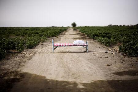Lisa Ross, 'Hearts in Cotton Field', 2013
