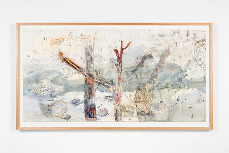 John Wolseley, 'The hidden territories of the Mangrove worm mollusc – Arafura Sea', 2019