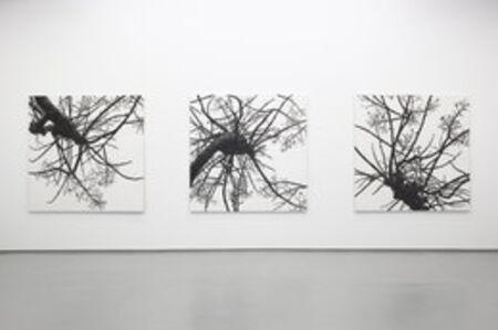Rieko Hidaka, 'Distance from the Sky IX', 2013