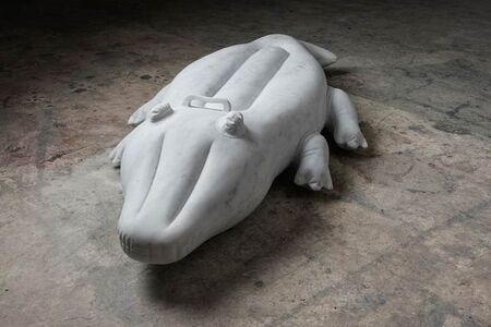 Kim De Ruysscher, 'Crocodile'