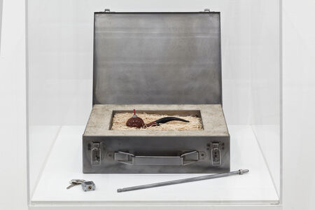 Mel Chin, 'Elementary Object (For Corsica)', 1993