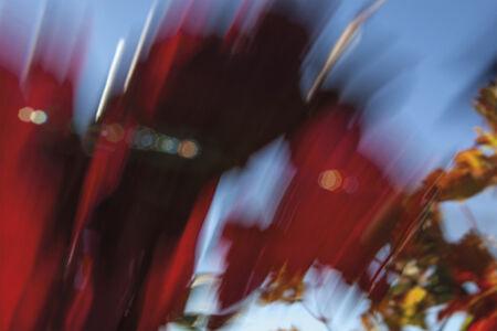 Rachel Cobb, 'Fierce Mistral 1/5'