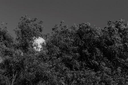 Noh Suntag, 'strAnge ball #BFK1401'