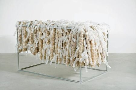 Lai Dieu Ha, 'Collecting skins - kungfu by time', 2015