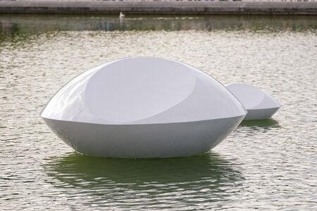 Marta Pan, 'Lentille flottante', 1994-2017