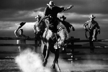Hannes Schmid, 'Bucking Horse', 1999