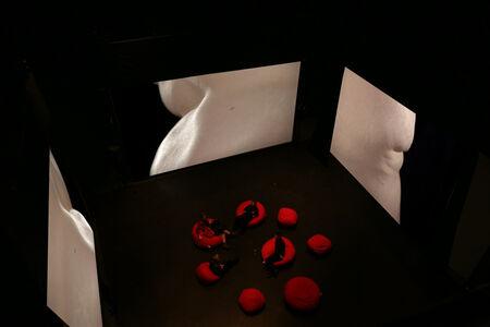 chameckilerner, 'Eskasizer (Video installation view)'