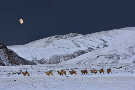 "Marc Progin, '""Bronze Moon"" [Altai, Mongolia]', 2014"
