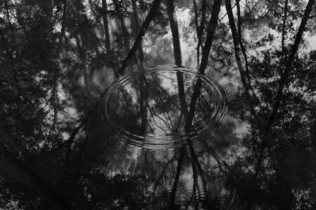 Michael Berman, 'Circles In Water, from Perdido', ca. 2016