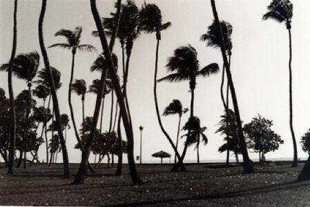 Christopher Makos, 'Palm Beach', 1987