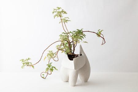 Simone Bodmer Turner, 'Planter 1', 2020