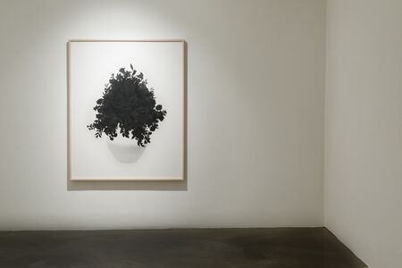 Kim Eunju, 'Calmly Drawing a Flower', 2014