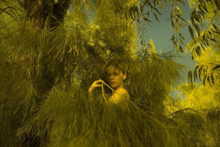 Itamar Freed, 'Girl in Pine', 2015