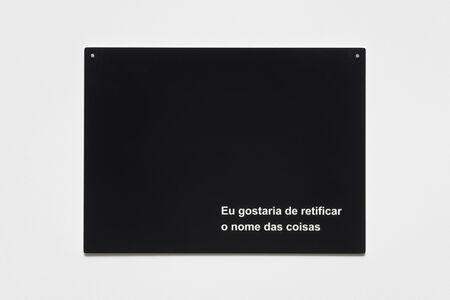 Manuela Ribadeneira, 'Eu gostaria de retificar o nome das coisas [I would like to rectify the name of the things]', 2016