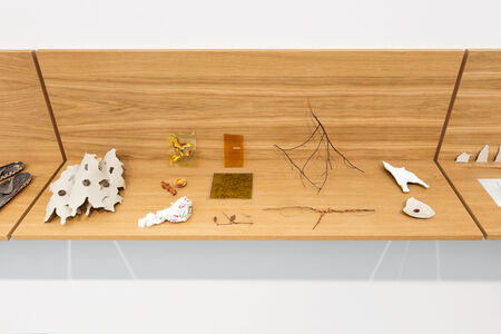 Daniel Steegmann Mangrané, 'Vitrine with Objects #4'
