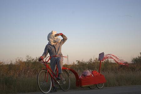 Amalie Atkins, 'Wolf on Bike with Streamers', 2009