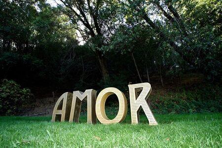 Laura Kimpton, 'Amor', 2015