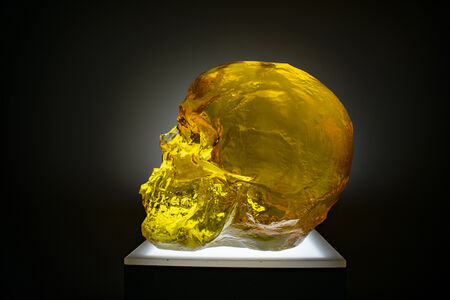 Sam Tufnell, 'Amber Skull', 2018