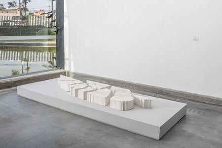 Irene Kopelman, 'Maras en Angul Virado (Maras from a Turned Angle)', 2014