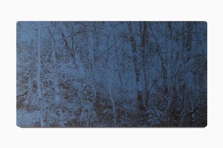 Cynthia Kampelmacher, 'Reinscription of a landscape', 2017
