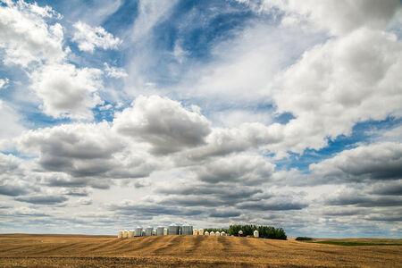 Stuart McCall, 'Industrial Farm - 2888', 2019