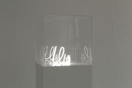 Lieven De Boeck, 'I Lie', 2012