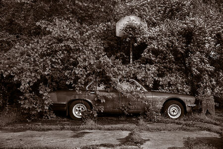 Gary Beeber, 'Abandoned Jaguar', 2019