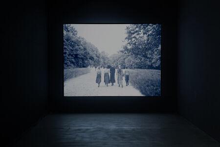 Alice Miceli, 'Piper (7.918 frames)', 2013
