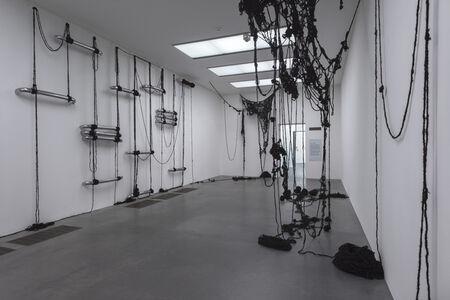 Sheela Gowda, 'Behold', 2009