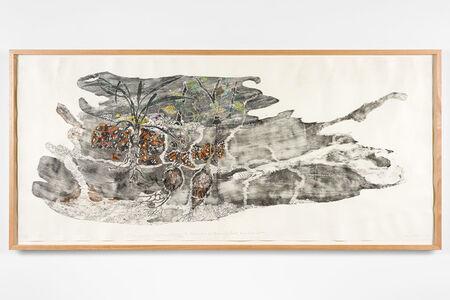John Wolseley, 'The hidden territories of the Mangrove worm mollusc – Arafura Sea', 201