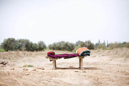 Lisa Ross, 'Roadside Bed', 2013