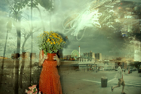 Lucia Fainzilber, 'Paradise 08', 2017