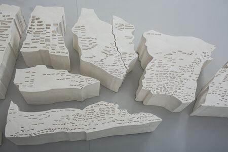 Irene Kopelman, 'Maras en Angulo Virado (Maras from a Turned Angle)', 2014