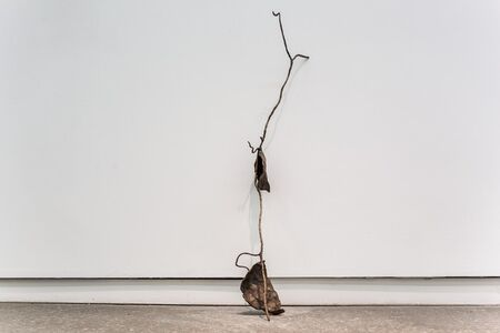 Derek Liddington, 'A vine molded in clay and cast in bronze from a memory experienced when I was 12 and forgotten when I was 36', 2018