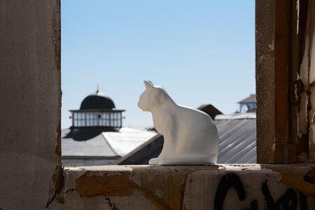 Haroon Gunn-Salie, 'One day my kittens will return', 2012
