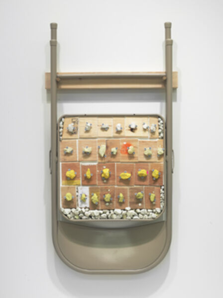 Phoebe Washburn, 'Skills Learned from my Hippie Orthodontist', 2011