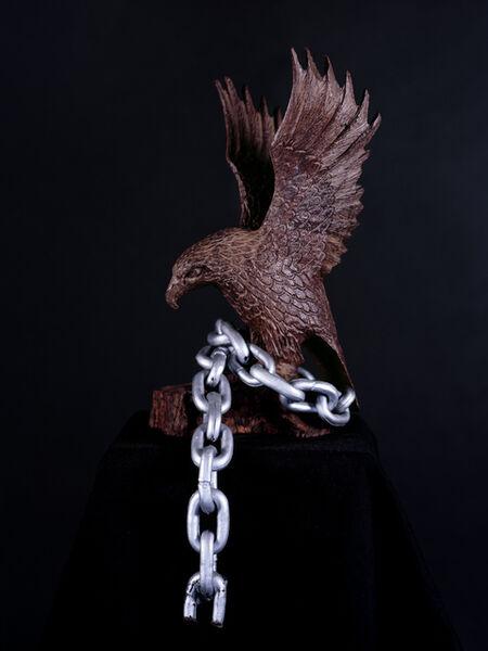 Mario Ybarra. Jr., 'Eagles', 2011