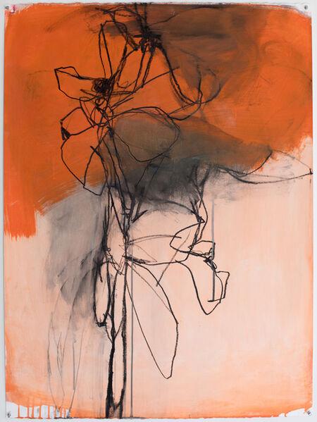 Andrea Rosenberg, 'Untitled 22.17', 2017