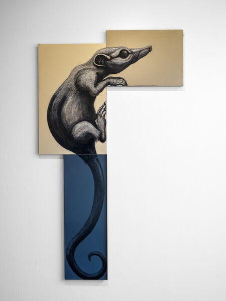ROA, 'TARSIPES ROSTRATUS MMXX - Honey Possum', 2020