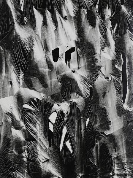 Brett Weston, 'Cracked plastic, Garapatta, 1955', 1955