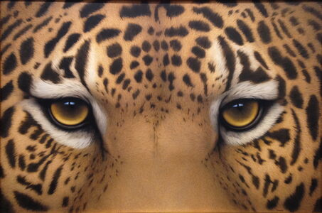 Tom Palmore, 'Jaguar Eyes', 2016