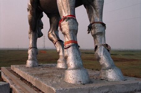 Gulnara Kasmalieva & Muratbek Djumaliev, 'Untitled (Horse)', 2005