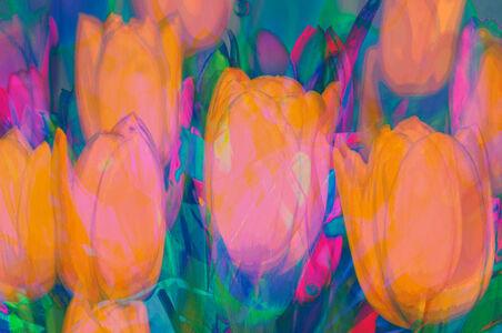 Sabine Wiedenhofer, 'Garden of eden tulips', 2020