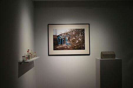 Shi Jin 金石, 'Cherry Blossom Backyard', 2014