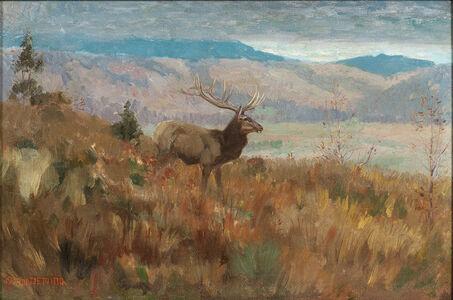 Edwin Willard Deming, 'Elk in Grassy Highlands, Autumn'