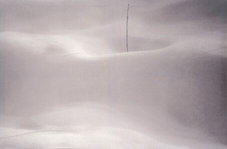 "Abbas Kiarostami, 'Untitled, from the series ""Snow White""'"
