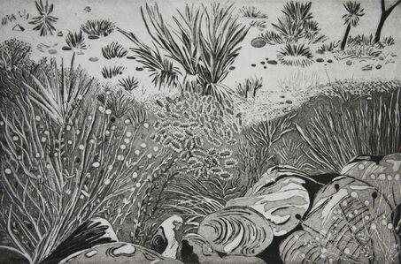 Kate Crook, 'Joshua Tree #1', 2017