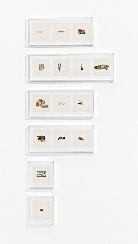 Taryn Simon, 'Animal Corpses (Prohibited), Animal Parts (Prohibited), Animal Skeletons (Prohibited), Animal Specimens (Prohibited), Butterflies (Prohibited), Snails (Prohibited)', 2010, Mixed Media, Archival inkjet prints in 6 Plexiglas boxes, Gagosian
