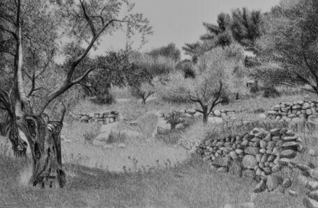 Samah Shihadi, 'Landscape, Olive Trees', 2018