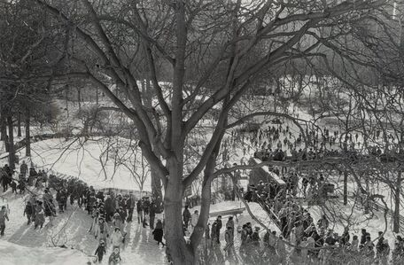 Paul McDonough, 'View in Central Park', 1978-printed later